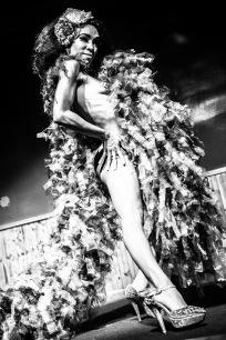Jeez Loueez- Photo by Greg Inda