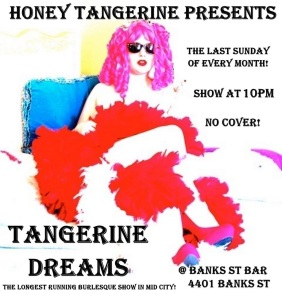 New Orleans - February 23rd - Tangerine Dreams at Banks St Bar
